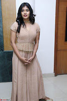 Hebah Patel in Brown Kurti and Plazzo Stuunning Pics at Santosham awards 2017 curtain raiser press meet 02.08.2017 019.JPG