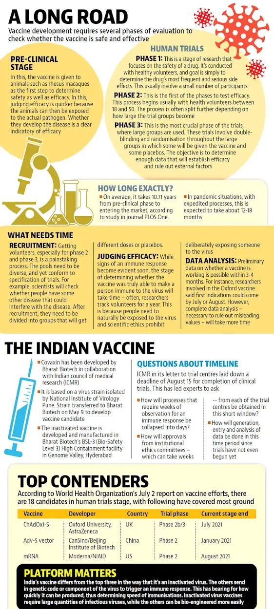 Vaccine development requires several phases of evaluation