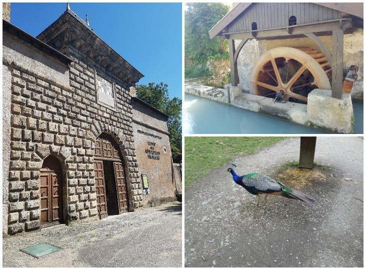 visite du chateau de vizille