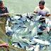 রাজ্যে মৎস্য দপ্তর কর্মী নিয়োগ বিজ্ঞপ্তি প্রকাশিত হয়েছে (Public Service Commission, West Bengal)