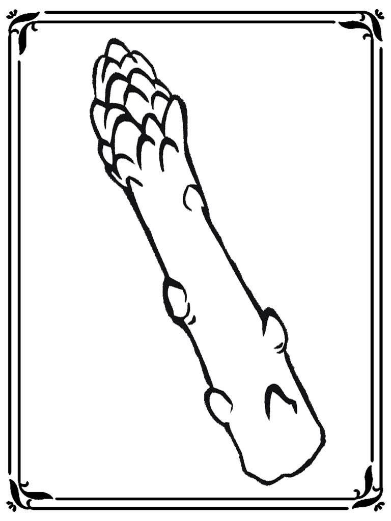 Coloring Pages Of Asparagus | Realistic Coloring Pages