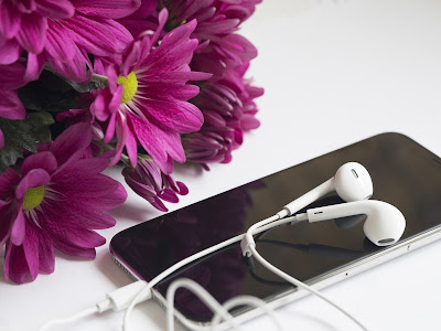 earphone, earphone with phone
