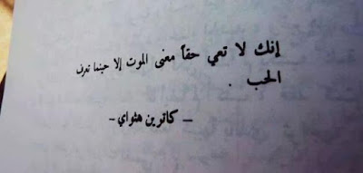 بعض المقولات عن الحب