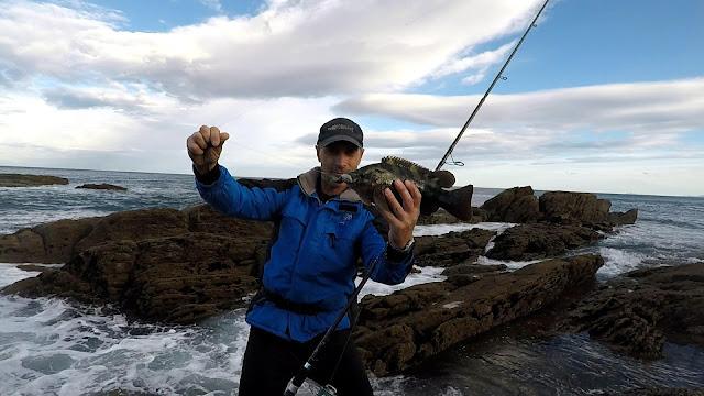 MARAGOTA - Caña de spinning Fisterra en acción de pesca