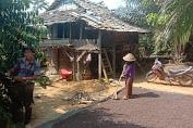 Kisah Petani di Pemayungan, Tinggal di Gubuk Reyot Berhasil Sekolahkan Anaknya Hingga Sarjana