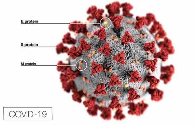 Trial Of Coronavirus Vaccine