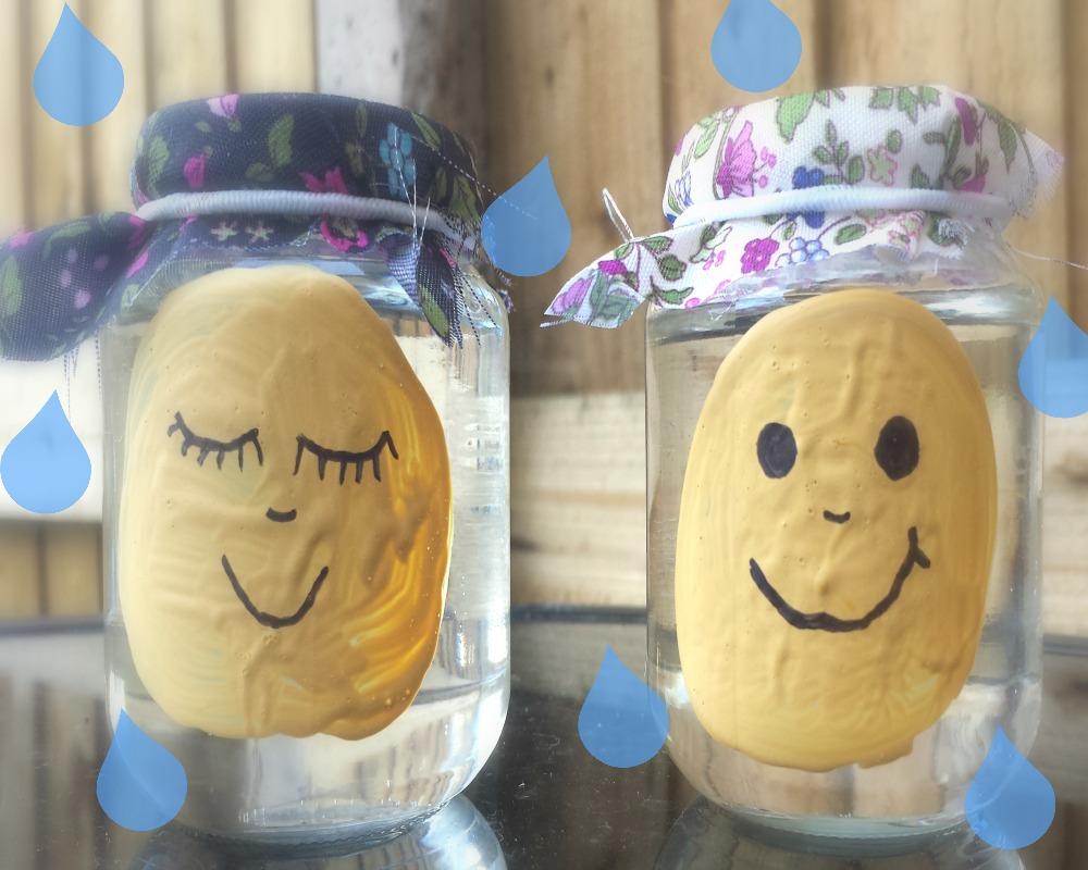 Rain Collector Jars Craft