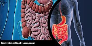 Gastrointestinal Hormonlar
