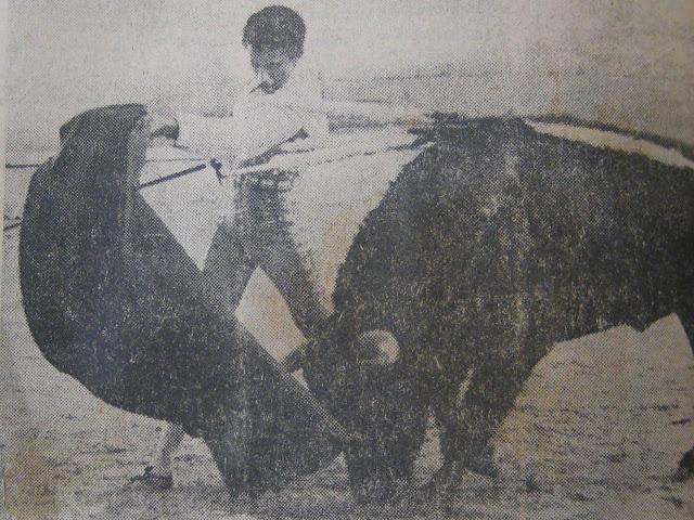 Foto: Archivo