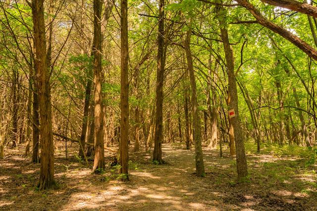 Cedar Brake Trail, Heard Natural Science Museum & Wildlife Center