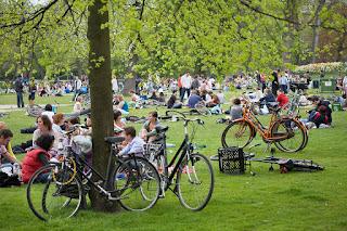 Vondelpark Summer - Amsterdam
