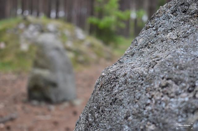 Polskie Stonehenge. Kamienne kręgi na Kaszubach.