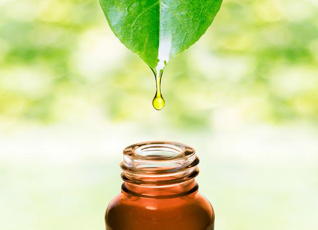 Bio & RSPO, bio oil