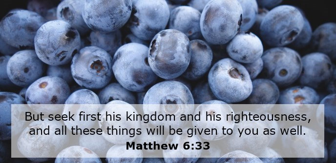 But seek first his kingdom and his righteousness, and all these things will be given to you as well.