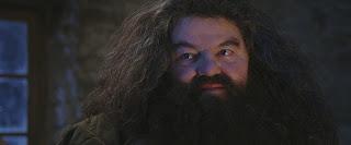 Bruxo do Mês de Janeiro: Rúbeo Hagrid | Ordem da Fênix Brasileira