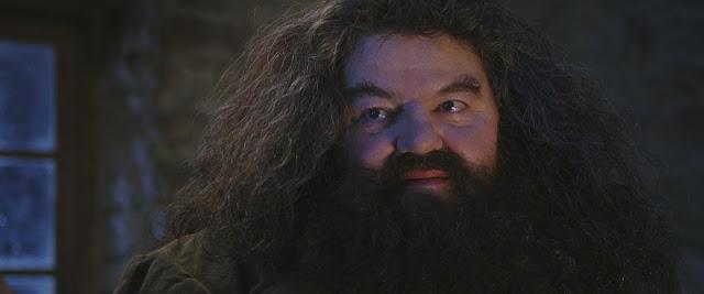 Dan Fogler comenta rumores sobre possível aparição de Hagrid em 'Animais Fantásticos 3' | Ordem da Fênix Brasileira