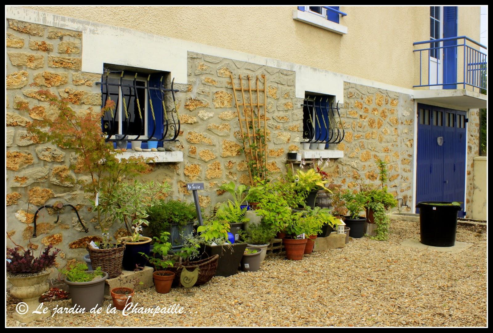 Le jardin de la Champaille: Mi-juin au jardin d\'ombre