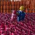 Pinky Movement Pertamina Targetkan 2.000 Outlet LPG dan 100 Usaha Kecil Gunakan LPG Nonsubsidi