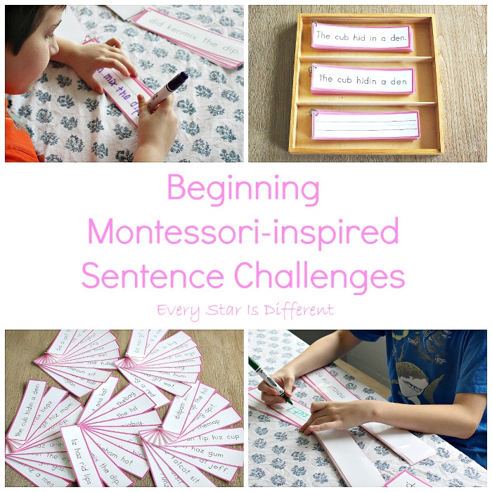 Beginner Montessori-inspired Sentence Challenges in Action