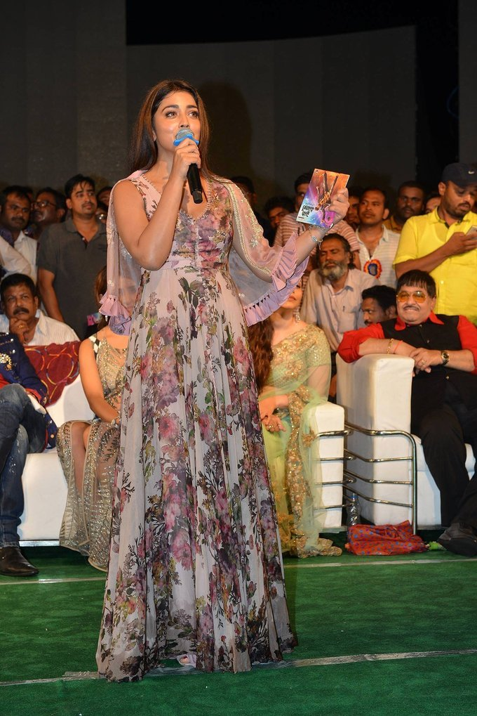 Paisa Vasool Movie Audio Launch Photos