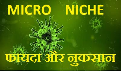 micro niche blog image