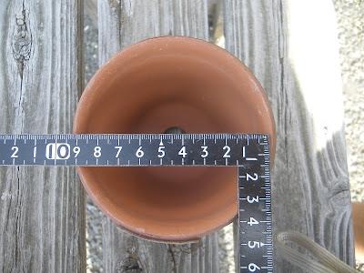 直径9センチ