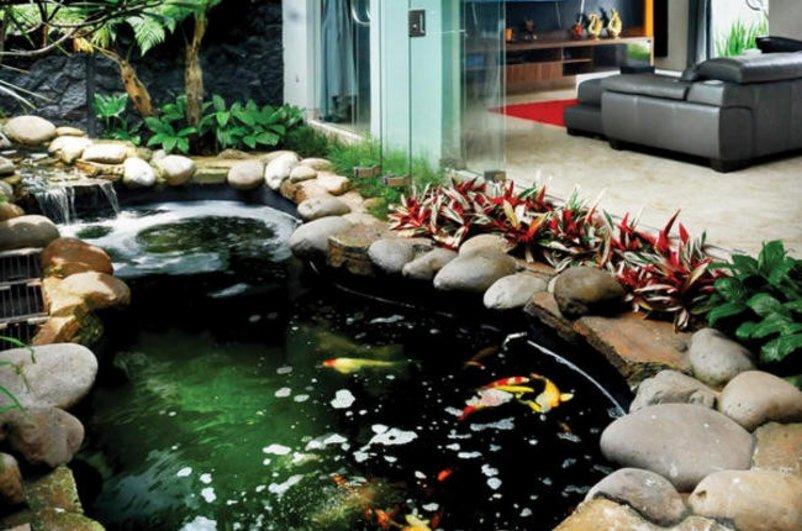 taman rumah minimalis dengan kolam ikan kreatif