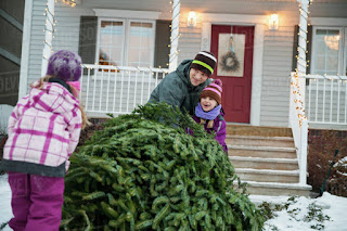 Two children and a man dragging a large evergreen tree towards a white house with a red door.