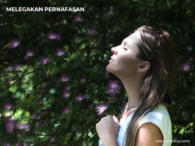 Cegah Masalah Pernapasan, pernafasan lancar, khasiat daun mint