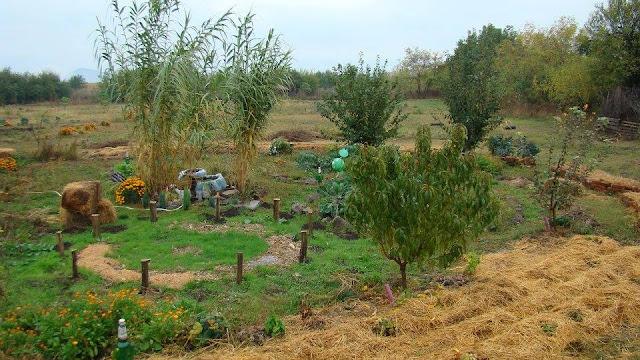permaculture in bulgaria