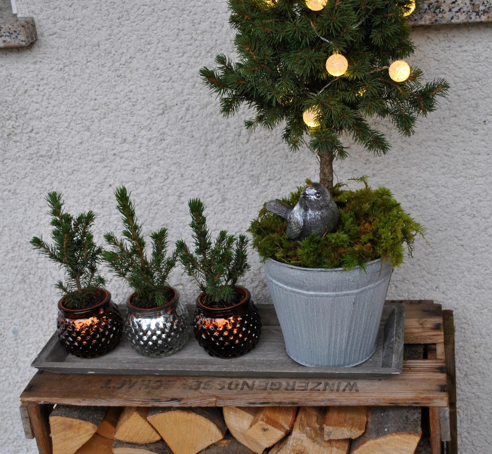 Entzückend Weinkisten Weihnachtlich Dekorieren Ideen Von Weihnachtliche Deko Von Blumen2000