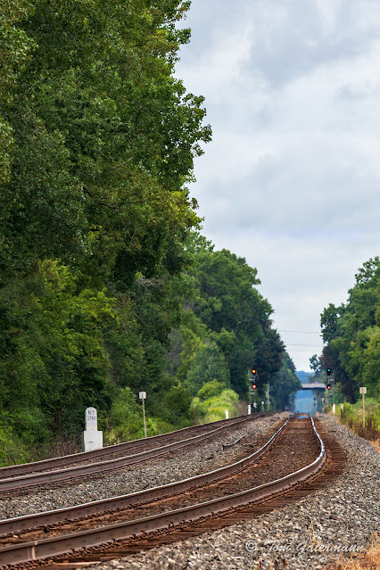 A distant view of the old NYC mile maker for mile 298 along the Rochester Subdivision