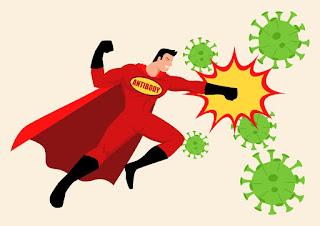 Cómo fortalecer tu sistema inmunológico