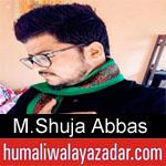 https://humaliwalaazadar.blogspot.com/2019/08/syed-mohammad-shuja-abbas-noha-2020.html