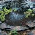 8 Manfaat Positif Kehadiran Kolam Ikan di Rumah