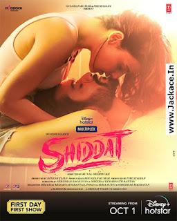 Shiddat: Journey Beyond Love Poster 7