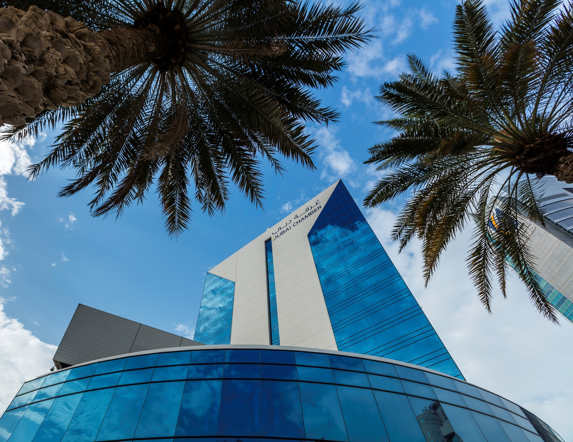 Dubai Chamber sees surge in exports to Central, Western Africa
