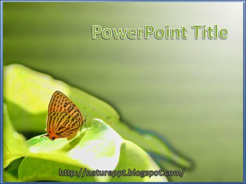 Nature powerpoint templates free download bellacoola powerpoint templates free nature images powerpoint template and powerpoints templates toneelgroepblik Choice Image