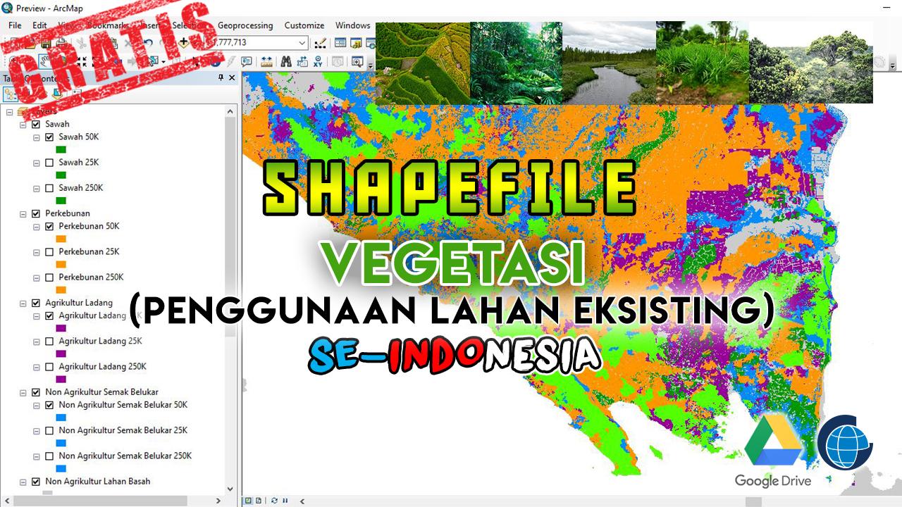 Data Shapefile Vegetasi (Penggunaan Lahan Eksisting) Indonesia