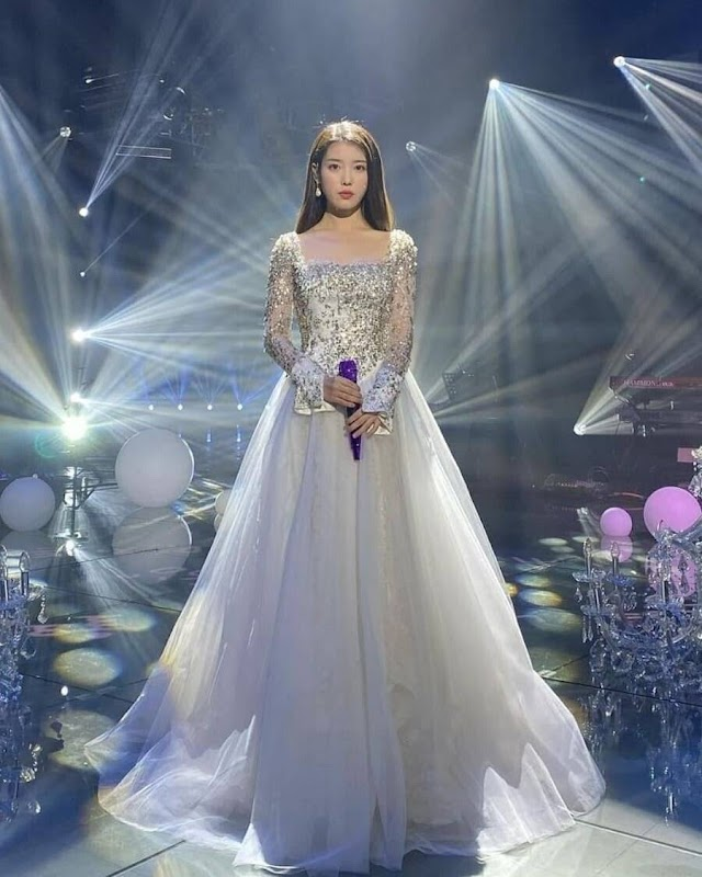 Knetz shares their thought about Singer IU various pretty and princess-like dress!