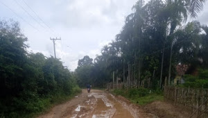 Kondisi Jalan Penghubun Antar Kecamatan Yang Terletak Di Desa, Tuo Sumay Dan Teriti ,Kecamatan Sumay Kabupaten Tebo Rusak Parah