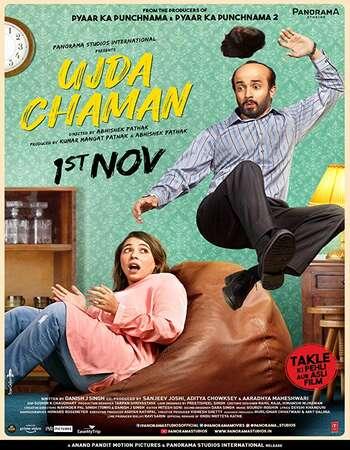 Ujda Chaman 2019 Hindi 550MB HDRip 720p ESubs HEVC