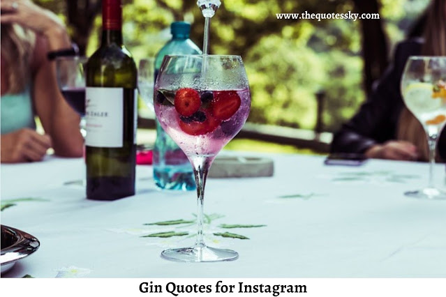 100+ Gin Quotes for Instagram [ 2021 ] Also Cocktail Captions