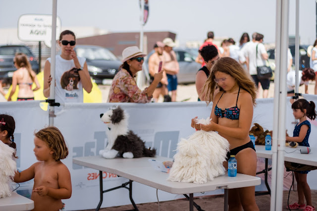 actividades para niños doggy beach alicante