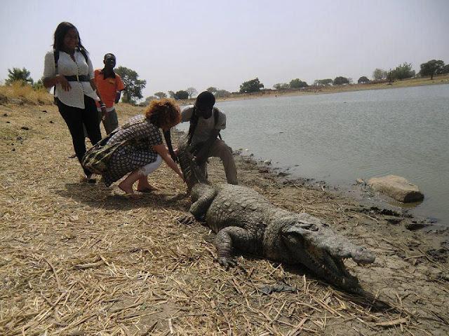 Người dân ở ngôi làng kì lạ sống cùng hàng trăm con cá sấu