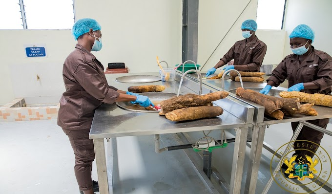 1D1F: President Akufo-Addo Commissions Gh¢10 Million Yam And Cassava Processing Factory In Krachi East