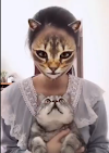 The Cat Face Filter : Here's How To Get It