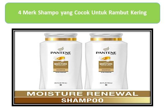 Pantene Pro-V Daily moisture renewal hydrating shampo