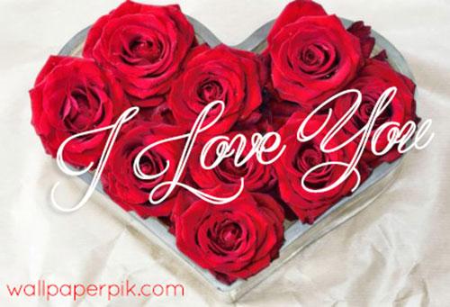i love you heart rose images