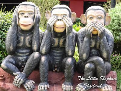3 Little Monkeys in Chiang Kham - North Thailand